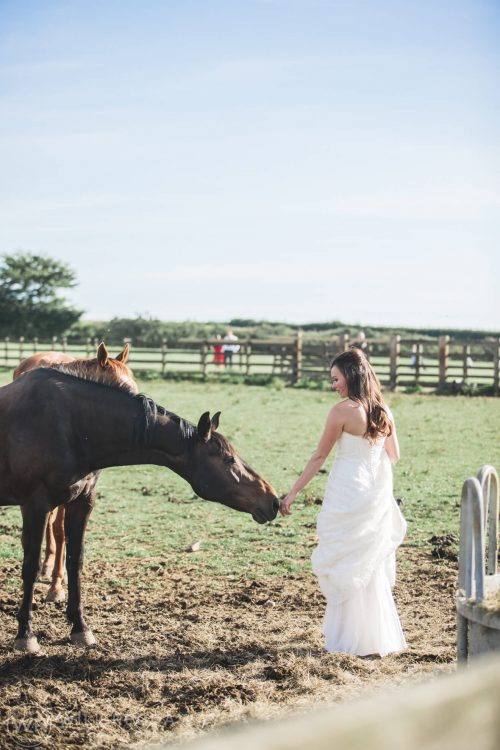 Marquee Wedding | Devon Wedding Photographer | Horses