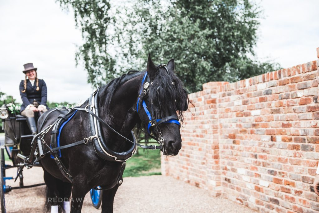 Farringdon Marquee Wedding   Devon Wedding Photographer   Horse & Carriage